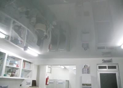 Laboratorio –  Inmunolab