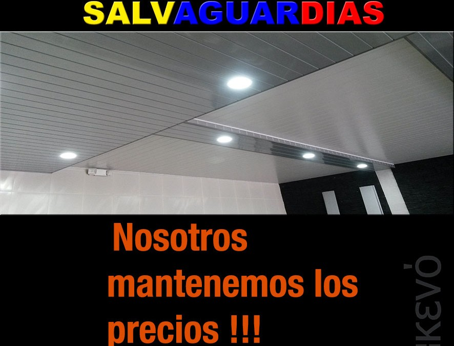 Salvaguardias